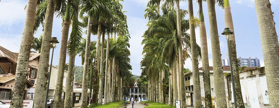 Campanha de Combate ao AVC inicia com eventos gratuitos em Joinville